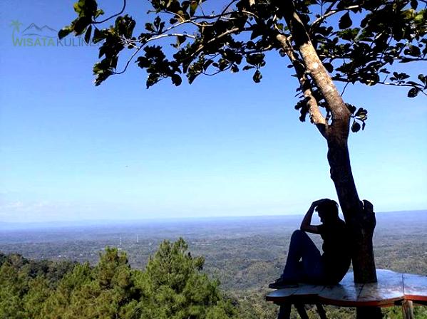 Fasilitas Gardu Pandang Pinus Asri