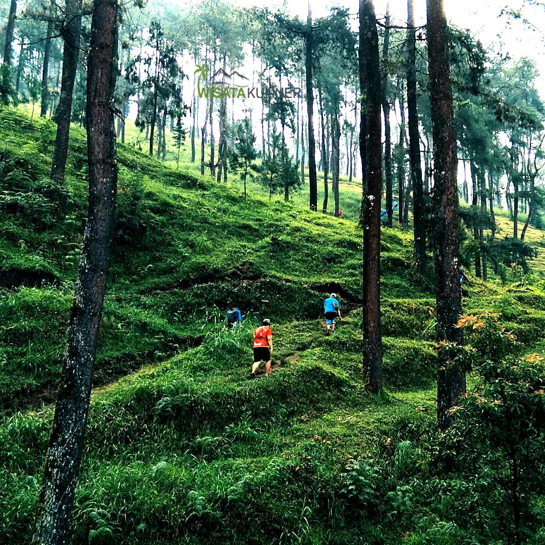 Fasilitas Taman Hutan Raya
