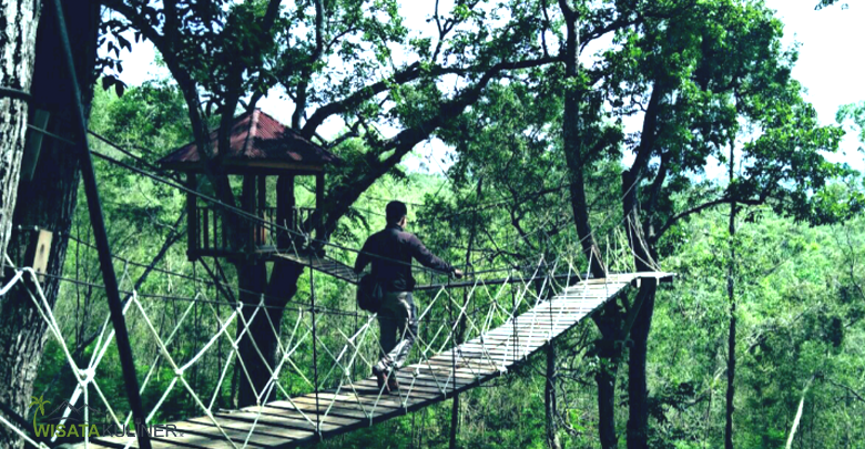 Harga Tiket Taman Hutan Raya