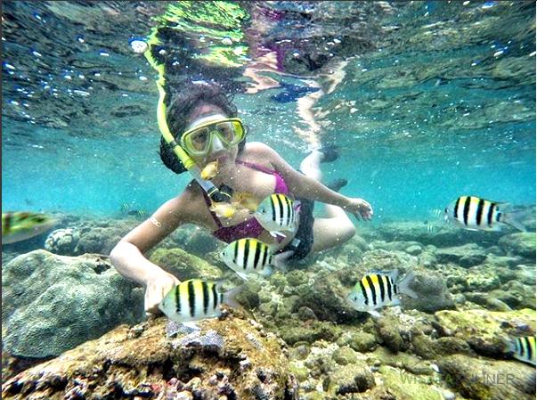 Wahana Snorkeling pantai nglambor