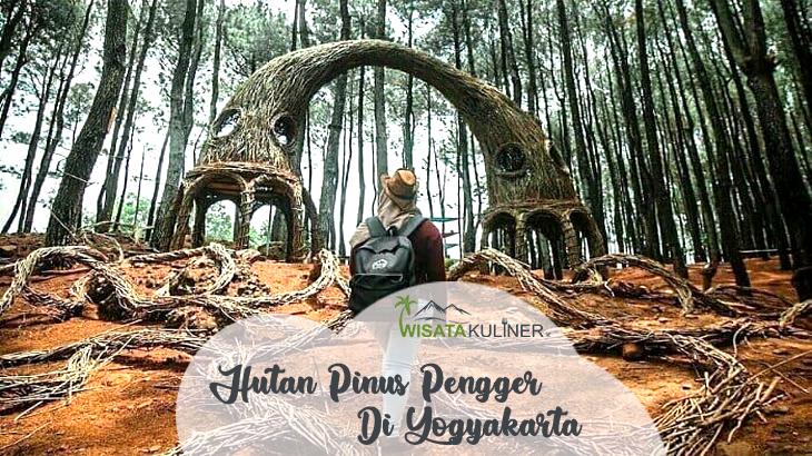 Wisata Hutan Pinus Pengger