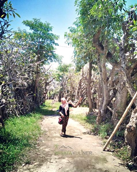 Harga Tiket dan Parkir Taman Kamboja Klaten