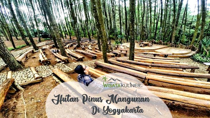 Wisata Hutan Pinus Mangunan