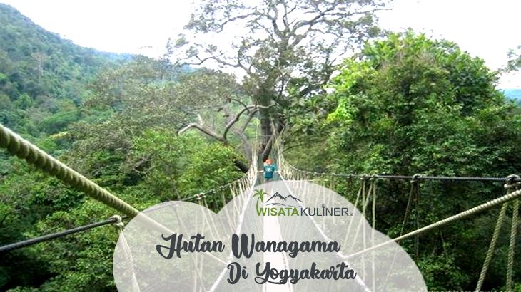 Wisata Hutan Wanagama