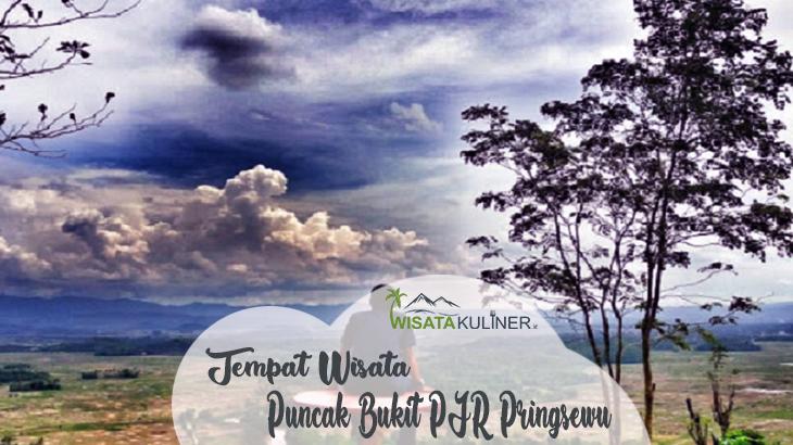 Puncak Bukit PJR Pringsewu