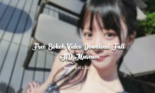 Free Bokeh Video Download Full HD Museum